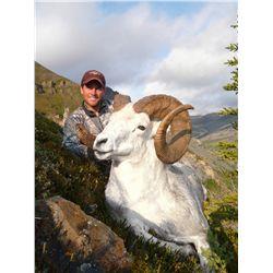 12 Dall Sheep Hunt for 1 Hunter & 1 Non-Hunter