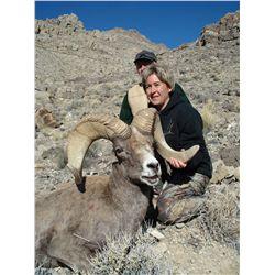 Nevada California Bighorn Sheep Heritage Tag