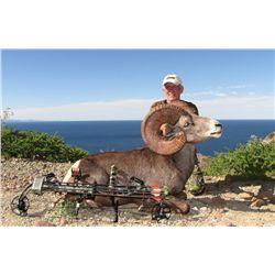 Carmen Island Desert Sheep Permit