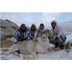 8-10 Day Marco Polo/Mid-Asian Ibex Hunt for 1 Hunter in Kyrgyzstan