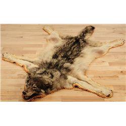 Jonas Brothers Wolf Skin Rug