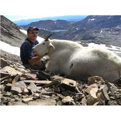 TROPHY MOUNTAIN GOAT HUNT ~ COLLINGWOOD BROTHERS GUIDES & OUTFITTERS