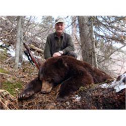 SPRING BLACK BEAR ~ HIGH CALIBER ADVENTURES LTD.