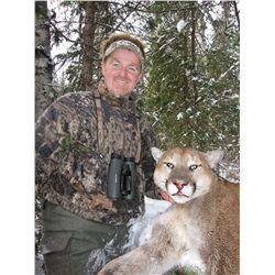 COUGAR HUNT ~ WHATSHAN GUIDES & OUTFITTERS LTD.
