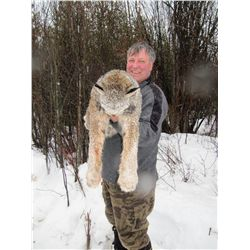 WINTER LYNX HUNT OPATCHO LAKE GUIDE OUTFITTERS