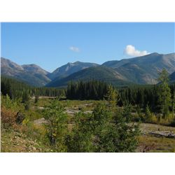 WILDERNESS ADVENTURE FOR 8 ~ PACKHORSE CREEK OUTFITTERS