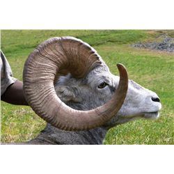 15-DAY STONE SHEEP HUNT ~ BRADFORD & CO GUIDE SERVICE LTD.