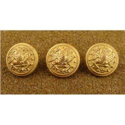 3 Civil War Naval Original Gilt Buttons D. Evans
