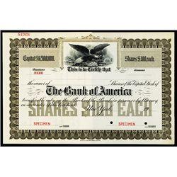 Bank of America Specimen Stock.