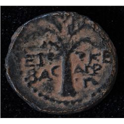 Jerusalem (85-86 AD) - AE-16 Agrippa II under Domitian Obv: Laur. hd. r. with legend Rev: Palm tree