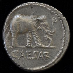 Julius Caesar (49-48 BC) - AR-Denarius Obv: Elephant walking r., on dragon CAESAR. Rev: No legend si