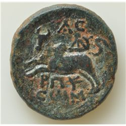 Caligula (37-41 AD) - AE-19 Sidon Obv: Veiled head of Caligula Rev: Europa facing on bull l., A C ab