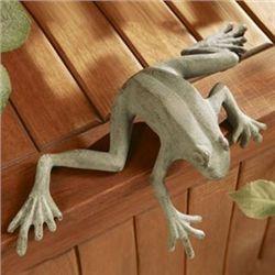 Curious Frog Shelf Sitter