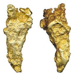 ALASKA GOLD NUGGET. A solid gold specimen in a large tear drop shape. Golden yellow in colour. Weigh