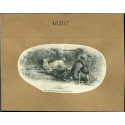 U.S. Hunting Related Vignettes Used on Obsolete B