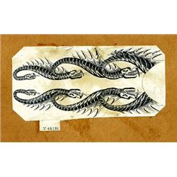 "U.S. W. Swaim Unique ""Rattle Snake"" Border Proof."