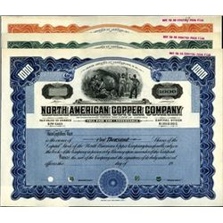 New Mexico. U.S. North American Copper Company.