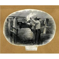 U.S. Cattle Branding Proof Image.