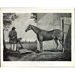 "U.S. ""Lecomte"" Horse Racing Print"