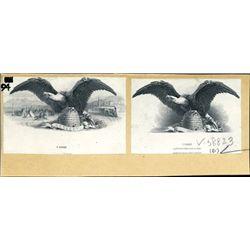 Utah Eagle on Beehive Vignette - Deseret Banner.