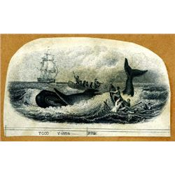 Whaling Vignette - Whale on Back Swamping Boat