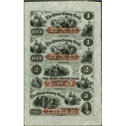 New Jersey. The Union County Bank Obsolete Sheet.