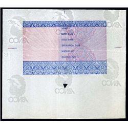U.S. Essay Birth Cert., License  - Tyvek Paper.