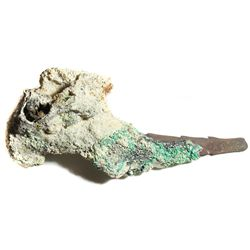 Bronze spike with heavy encrustation, its exposed part showing notches.