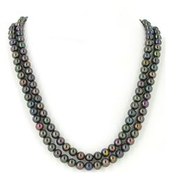 Black Saltwater Pearl 2 Strand Necklace (JEW-2592)