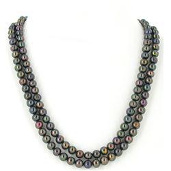 Black Saltwater Pearl 2 Strand Necklace (JEW-2592)