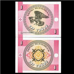 1993 Kyrgyzstan 1 Tyiyn Note Crisp Unc (CUR-06483)