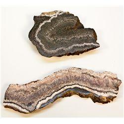 Mohawk Mine Silver Mineral Specimens NV - Esmeralda County,2012aug - Mineral Specimens
