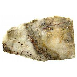 Gold Ore Rock Specimen NV - Goldfield,Esmeralda County - c1907 - 2012aug - Mineral Specimens