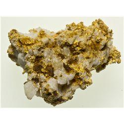 Gold Quartz Mineral Specimen NV - Nye County,2012aug - Mineral Specimens