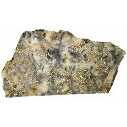 Quartz Ore Slab with Gold OR - c1900 - 2012aug - Mineral Specimens