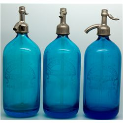 Beautiful Cobalt Seltzers NV - Reno,Washoe County - c1907-1910 - 2012aug - Nevada Bottles
