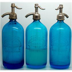 Gorgeous Cobalt Seltzers NV - Reno,Washoe County - c1907-1910 - 2012aug - Nevada Bottles