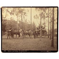 Photo From Midwinter Fair CA - San Francisco, - 1894 - 2012aug - Worlds Fair