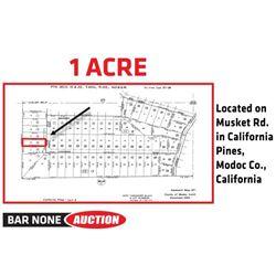 1 Acre in Modoc County, CA
