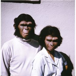 PLANET OF THE APES, BENEATH THE PLANET OF THE APES & CONQUEST OF THE PLANET OF THE APES SLIDES