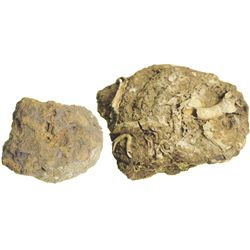Small but thickly encrusted (as found) clump of 3 Spanish colonial 8R (probably Charles III busts).
