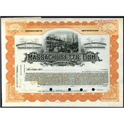 Massachusetts Fish Co., Specimen Stock.