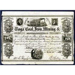 Tioga Coal, Iron, Mining & Manufacturing Co. Issued Stock.