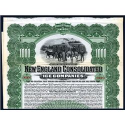 New England Consolidated Ice Co.'s Specimen Stock.