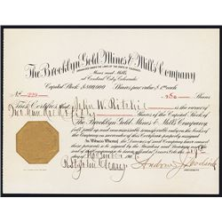 Brooklyn Gold Mines & Mills Co. Issued Stock.