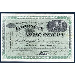 Brooklyn Mining Co. Issued Stock.