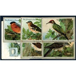 Bird Related Advertising Cards.