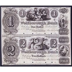 Wolfborough Bank, 1839 Issue Obsolete Uncut Pair Color Specimen in Brown.