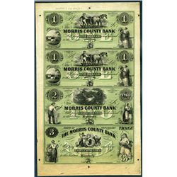 Morris County Bank, Uncut Sheet of 4, 1850's Full Tint Unissued Banknotes.