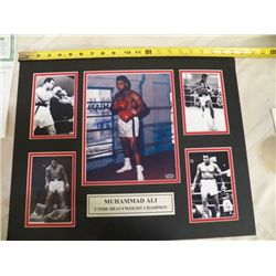 """Muhammad Ali Autographed Mat With Certificate of Authenticity 20"""" x 16"""""""